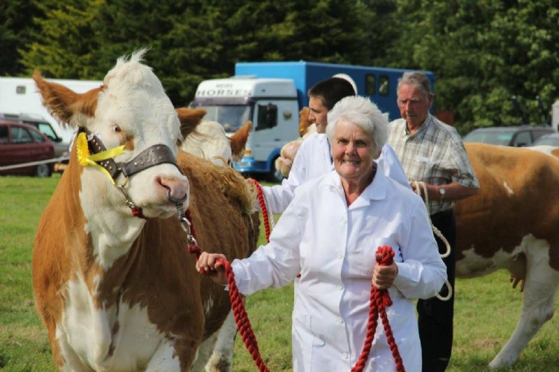 Crowds Bask in Sunshine at Castlewellan Show